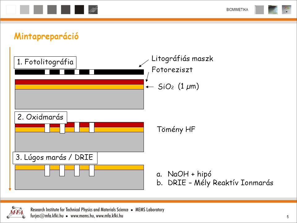 5 BIOMIMETIKA Mintapreparáció Litográfiás maszk Fotoreziszt SiO 2 1. Fotolitográfia 2. Oxidmarás 3. Lúgos marás / DRIE Tömény HF a.NaOH + hipó b.DRIE