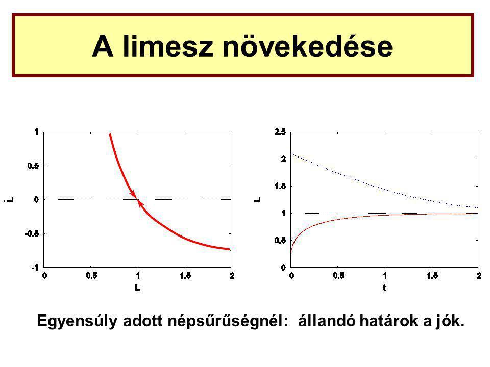 A limesz növekedése Egyensúly adott népsűrűségnél: állandó határok a jók.