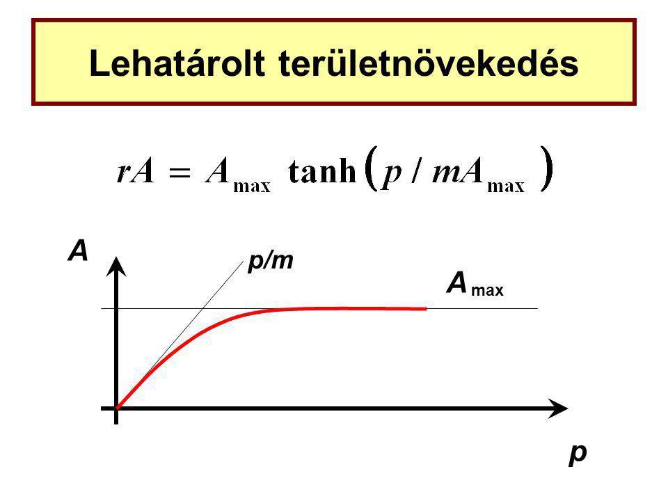 Lehatárolt területnövekedés A p A max p/m