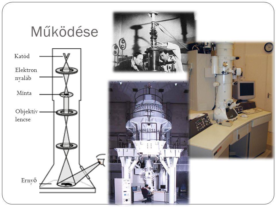 Működése M ű ködési elv ~ fénymikroszkóp Elektromágneses lencsék Sokoldalú használat (analitika, anyagszerkezet) Katód Elektron nyaláb Minta Objektív
