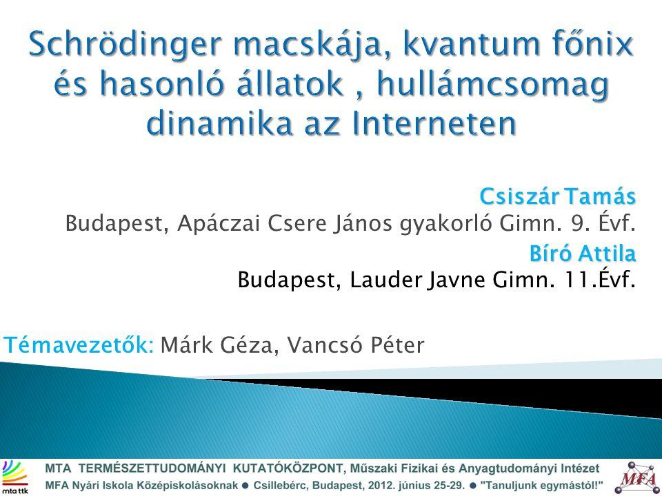 Témavezetők: Márk Géza, Vancsó Péter Csiszár Tamás Csiszár Tamás Budapest, Apáczai Csere János gyakorló Gimn.