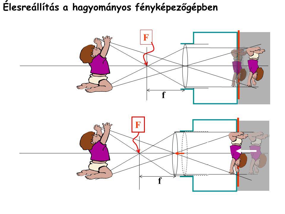 1.A fényérzékelõ sejtek: a pálcikák és csapok; 2.A bipoláris sejtek, a jeleket továbbítják; 3.A ganglionsejtek axonjainak együttese a látóideg.