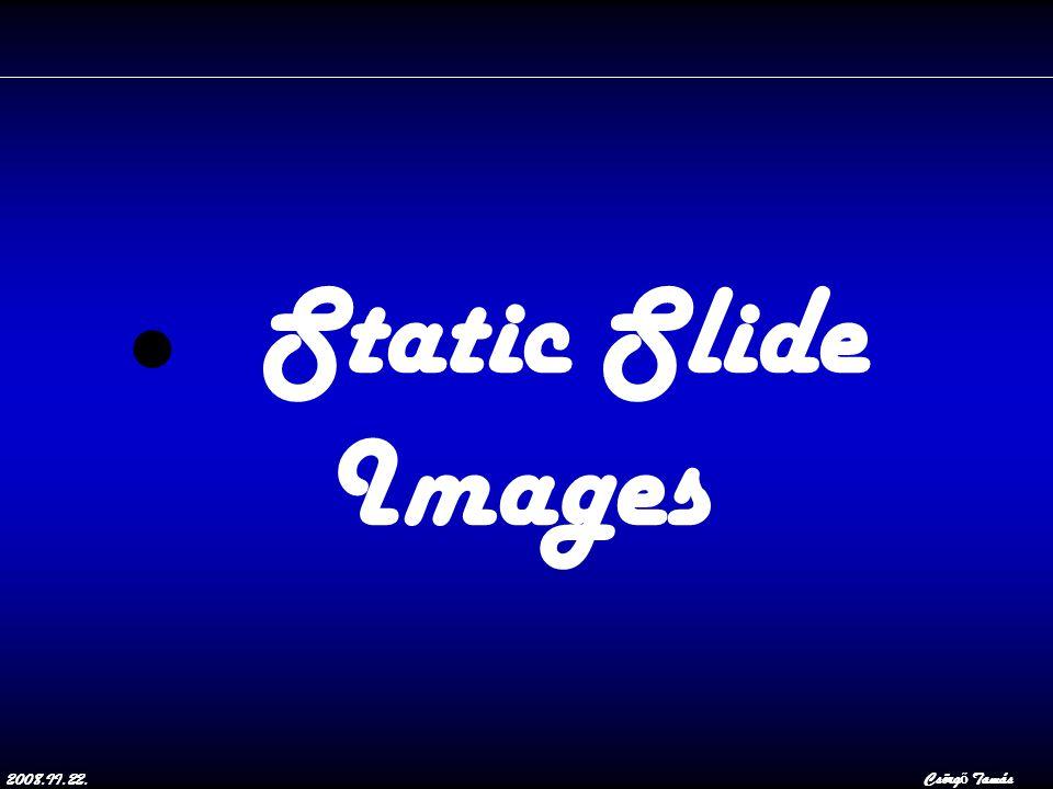 2008.II.22.Csörg ő Tamás Static Slide Images