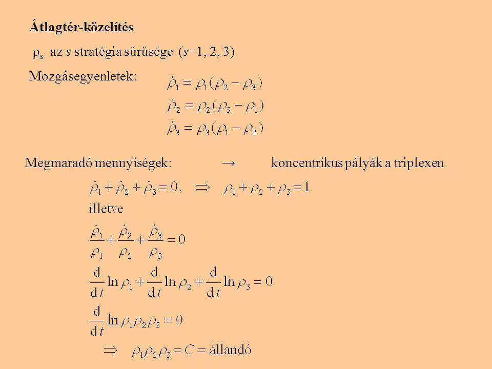 Mozgásegyenletek stacionáris megoldása: szimmetrikus: perturbáció → oszcillálás 3 homogén: instabil a ragadozójával szemben Numerikus megoldás: oszcilláló megoldások koncentrikus pályák a triplexen