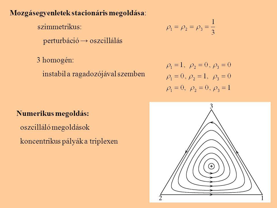 Mozgásegyenletek stacionáris megoldása: szimmetrikus: perturbáció → oszcillálás 3 homogén: instabil a ragadozójával szemben Numerikus megoldás: oszcil