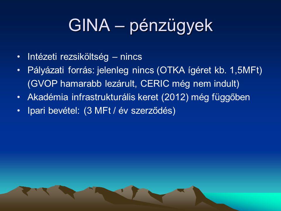 GINA – pénzügyek Intézeti rezsiköltség – nincs Pályázati forrás: jelenleg nincs (OTKA ígéret kb. 1,5MFt) (GVOP hamarabb lezárult, CERIC még nem indult