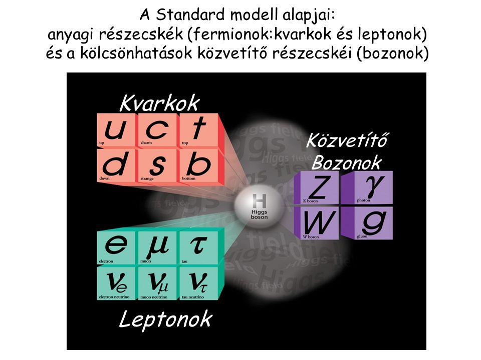 """[ Spin = ½ (Fermionok)] , 8 gluon,W +,W -,Z 0 [Spin = 1 (Bozonok)] A Standard modell részecskéi: anyagi részecskék (kvarkok / leptonok) és a kölcsönhatások közvetítői: 12 """"anyagi részecske (kvark/lepton:fermion) Kölcsönhatások közvetítői: Erős: 8 gluon Elektromágneses:  Gyenge: W +,W -,Z 0 12 közvetítő (bozon) Közvetítő kvark/lepton u up c charm t top d down s strange b bottom e   e elektron  müon  tau Kvarkok Leptonok  foton g gluon Z 0 bozon W ± Közvetítők"""