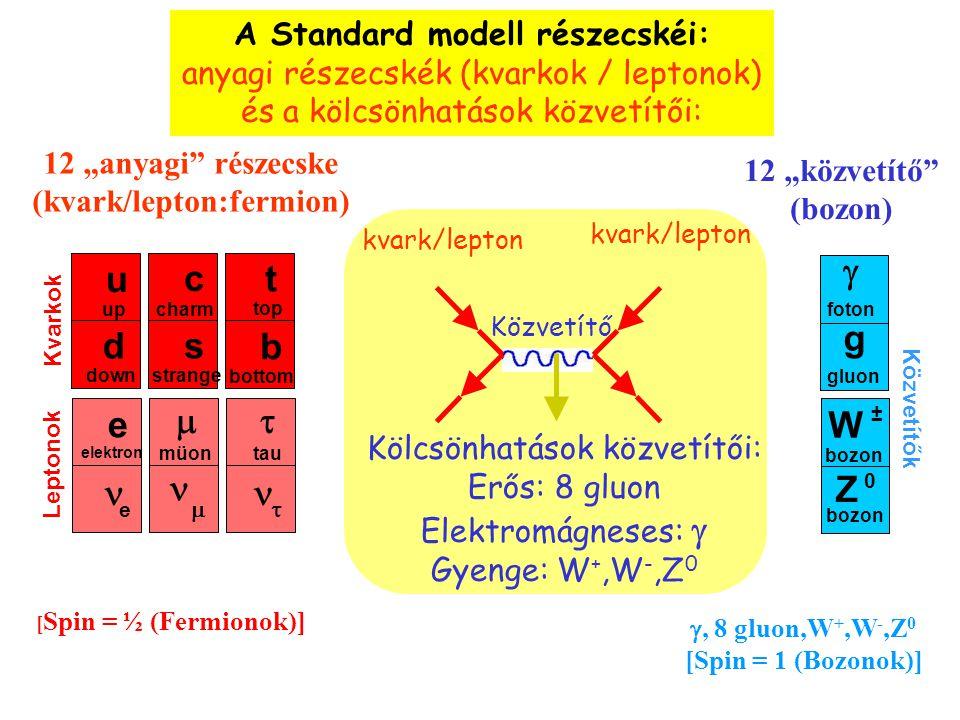 Az előző lapon látottakat (részecskék és kölcsönhatásaik) az u.n. Standard Modell foglalja elméleti egységbe. Ismétlésként rakjuk mindezeket 1 összefo