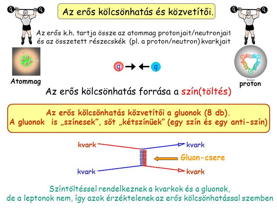 Kvarkok Leptonok Közvetítő Bozonok A Standard modell alapjai: anyagi részecskék (fermionok:kvarkok és leptonok) és a kölcsönhatások közvetítő részecskéi (bozonok) A képen látható egy részecske amiről még nem beszéltünk.