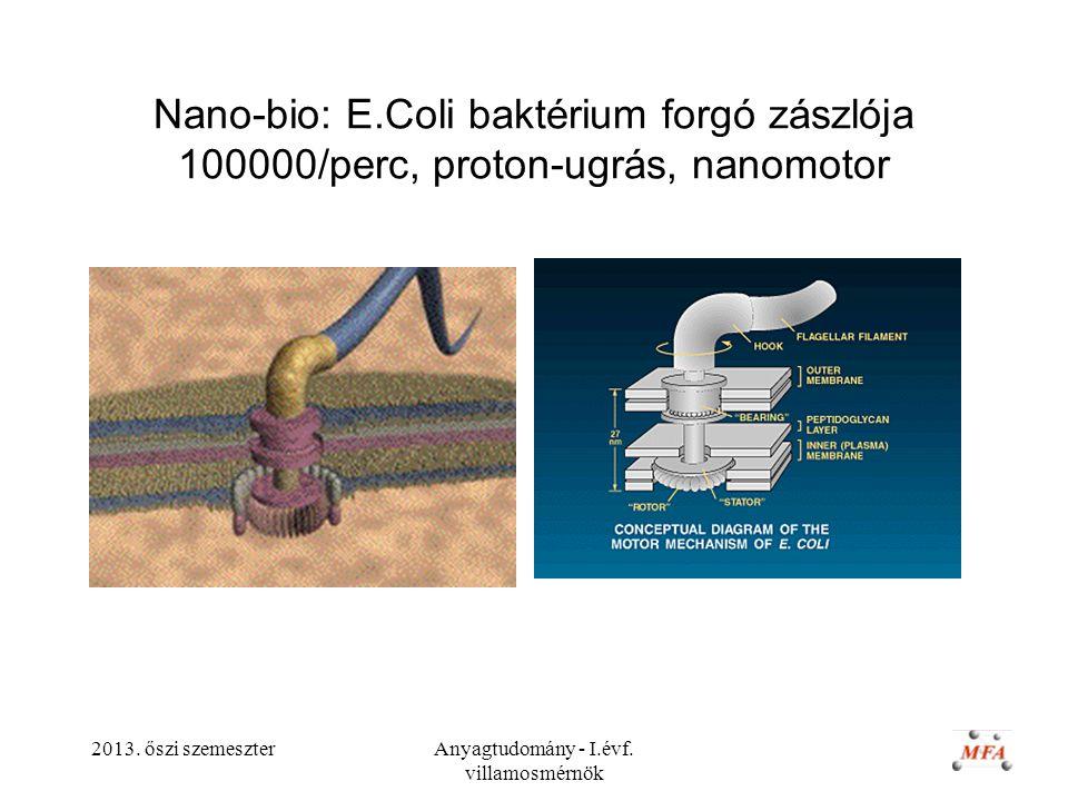 2013. őszi szemeszterAnyagtudomány - I.évf. villamosmérnök Nano-bio: E.Coli baktérium forgó zászlója 100000/perc, proton-ugrás, nanomotor