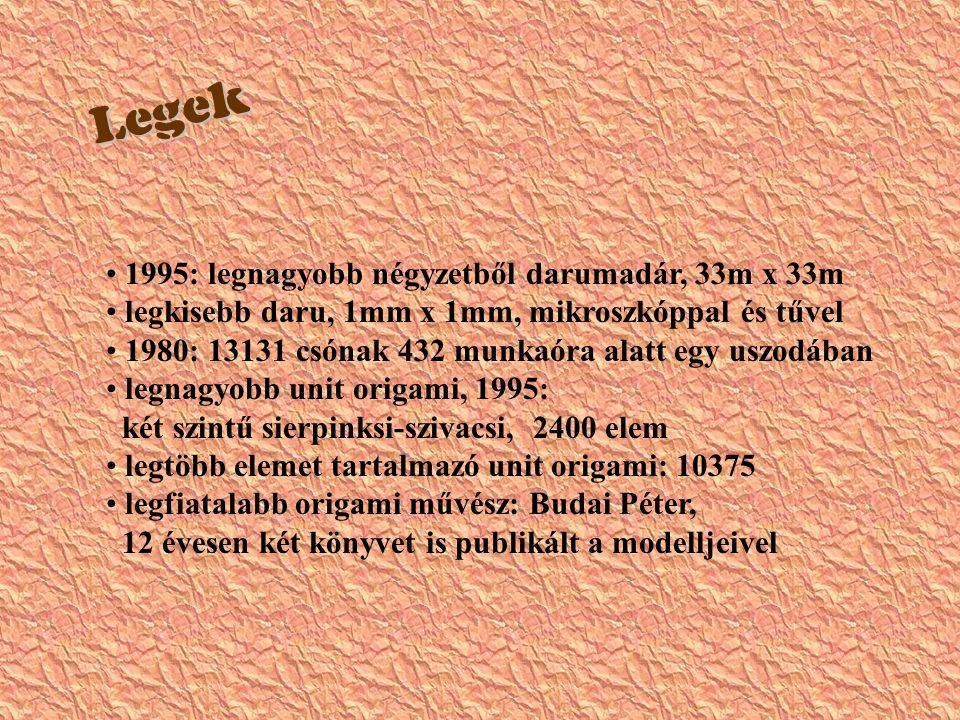  1995: legnagyobb négyzetből darumadár, 33m x 33m legkisebb daru, 1mm x 1mm, mikroszkóppal és tűvel 1980: 13131 csónak 432 munkaóra alatt egy uszodában legnagyobb unit origami, 1995: két szintű sierpinksi-szivacsi, 2400 elem legtöbb elemet tartalmazó unit origami: 10375 legfiatalabb origami művész: Budai Péter, 12 évesen két könyvet is publikált a modelljeivel