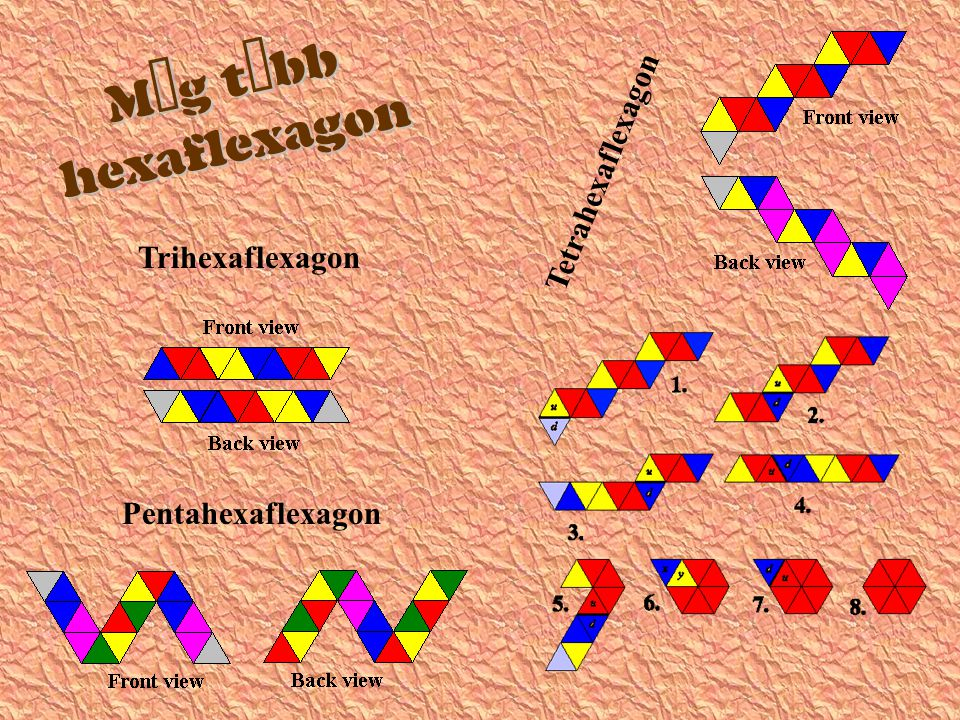   Trihexaflexagon Pentahexaflexagon Tetrahexaflexagon