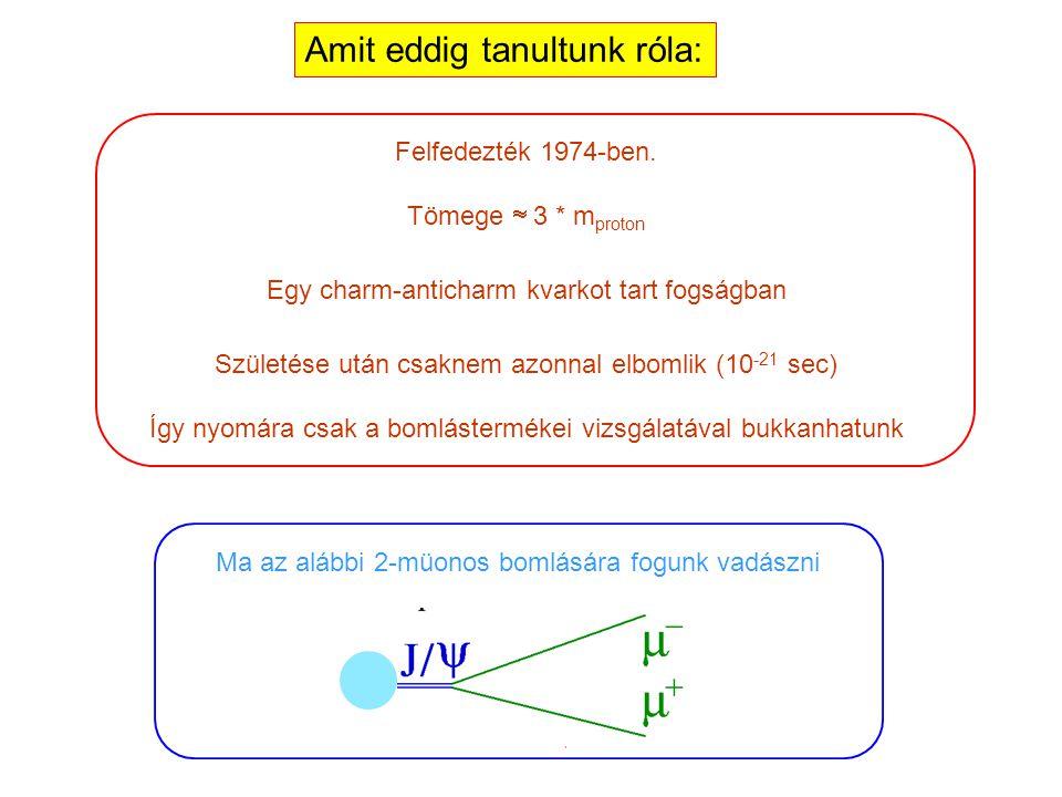 Most pedig jöjjön a mai napunk sztárja: a J/  részecske!