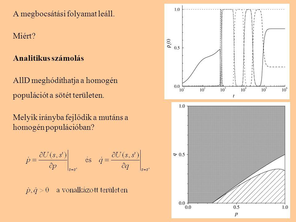 8 A megbocsátási folyamat leáll. Miért? Analitikus számolás AllD meghódíthatja a homogén populációt a sötét területen. Melyik irányba fejlődik a mután