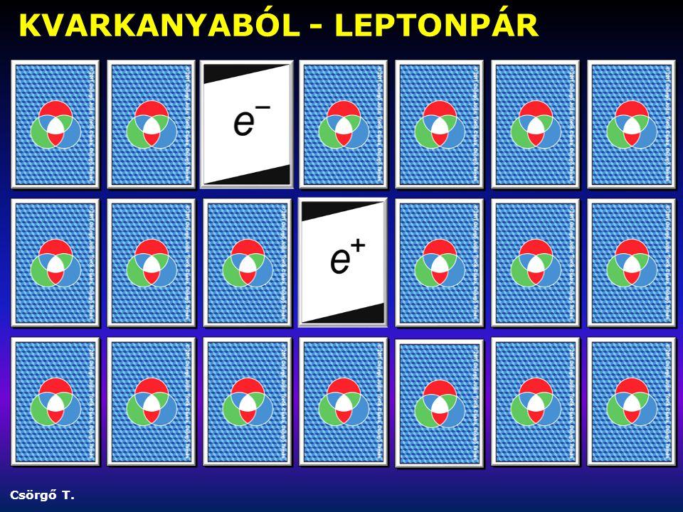 Csörgő T. KVARKANYABÓL - LEPTONPÁR