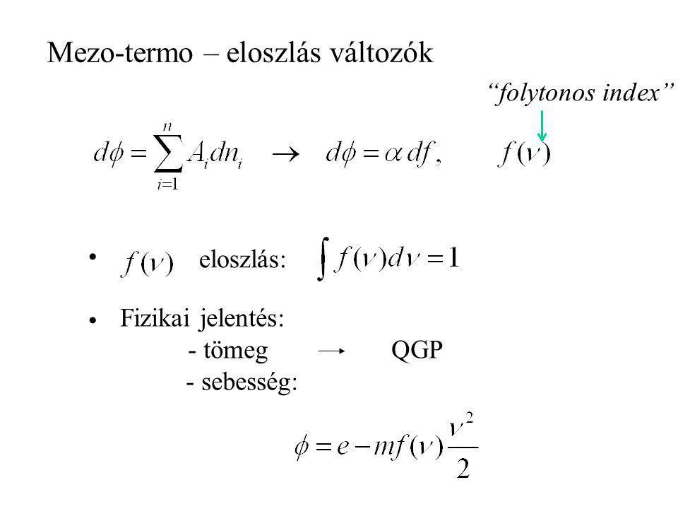 Ginzburg-Landau (termodinamikai, nem lokalizálható) Liu-eljárás (Farkas-lemma) konstitutív állapot konstitutív függvények