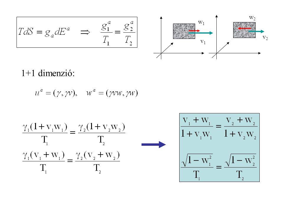 v2v2 w2w2 v1v1 w1w1 1+1 dimenzió: