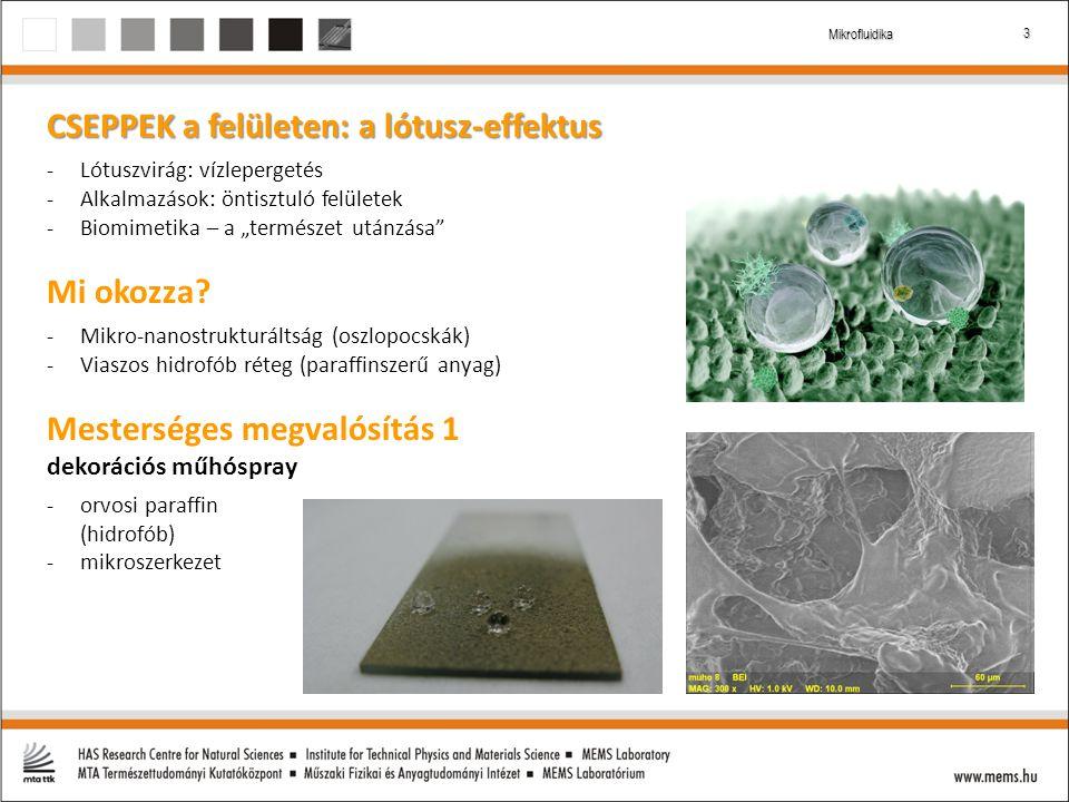 """3 Mikrofluidika CSEPPEK a felületen: a lótusz-effektus -Lótuszvirág: vízlepergetés -Alkalmazások: öntisztuló felületek -Biomimetika – a """"természet utánzása Mi okozza."""