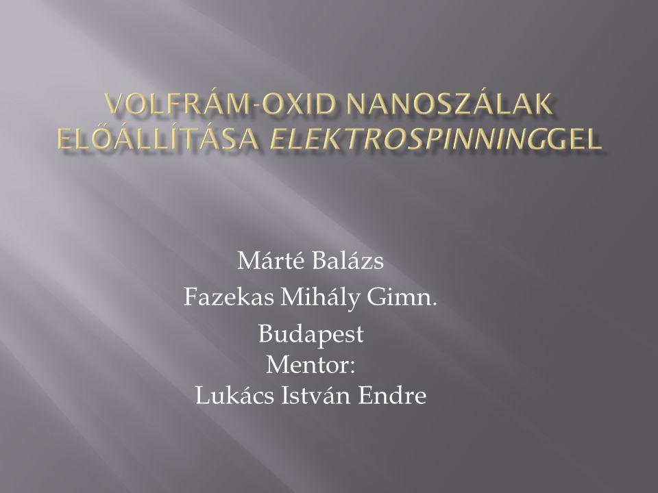 Márté Balázs Fazekas Mihály Gimn. Budapest Mentor: Lukács István Endre