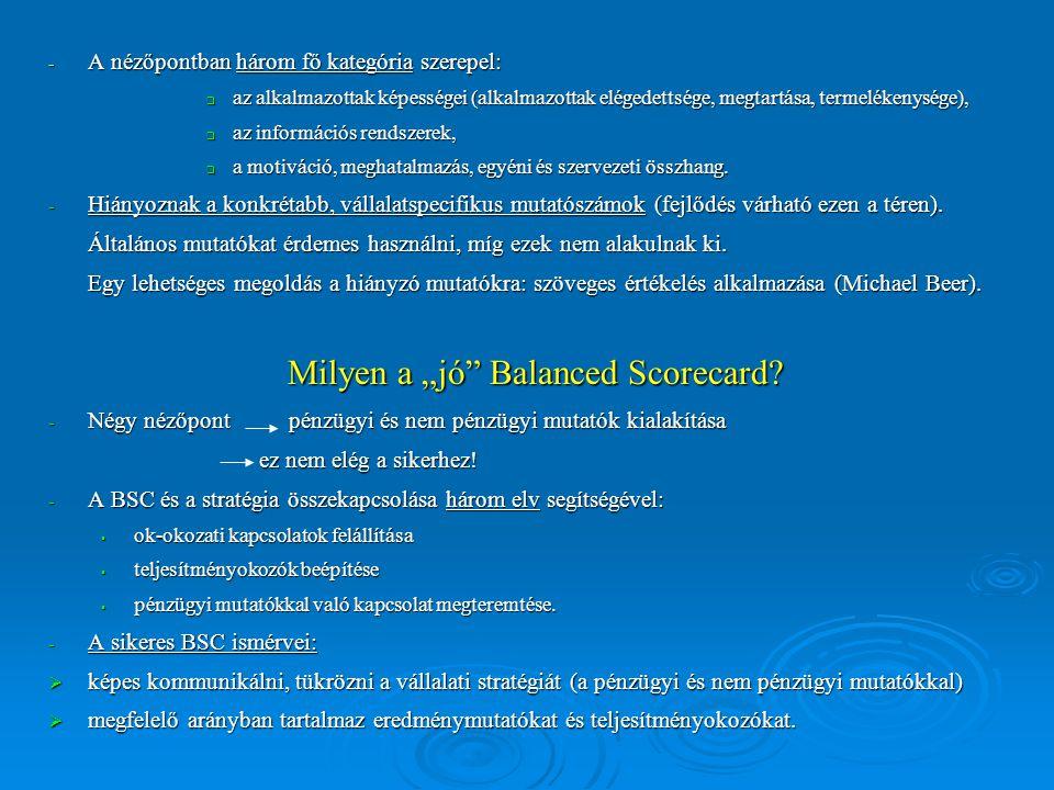 - A nézőpontban három fő kategória szerepel:  az alkalmazottak képességei (alkalmazottak elégedettsége, megtartása, termelékenysége),  az információs rendszerek,  a motiváció, meghatalmazás, egyéni és szervezeti összhang.
