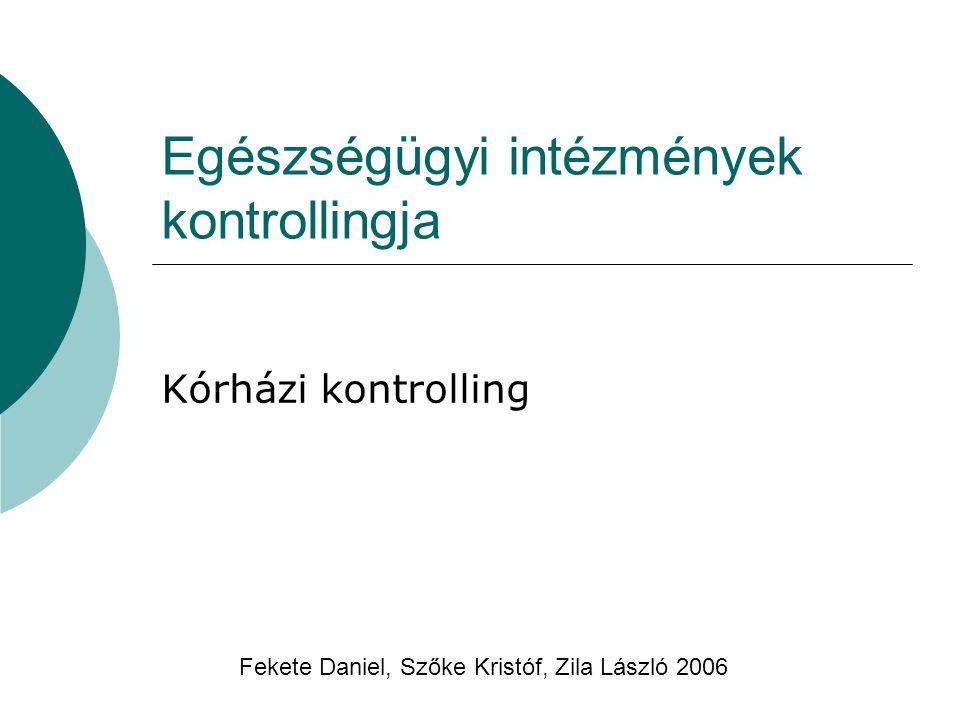 Egészségügyi intézmények kontrollingja Kórházi kontrolling Fekete Daniel, Szőke Kristóf, Zila László 2006
