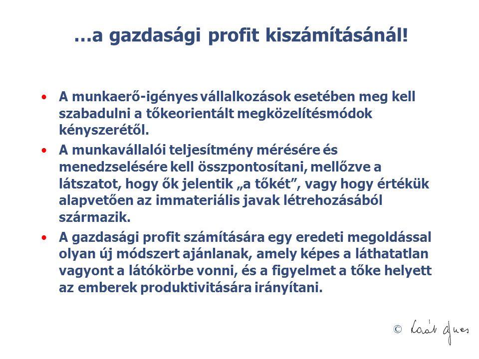 © …a gazdasági profit kiszámításánál! A munkaerő-igényes vállalkozások esetében meg kell szabadulni a tőkeorientált megközelítésmódok kényszerétől. A