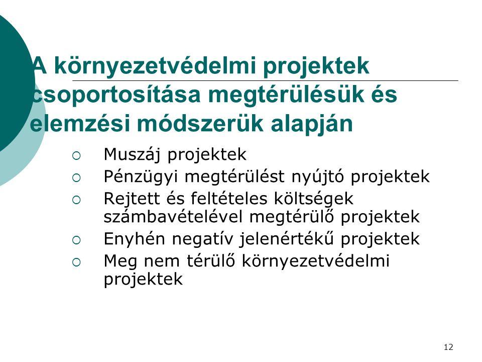 12 A környezetvédelmi projektek csoportosítása megtérülésük és elemzési módszerük alapján  Muszáj projektek  Pénzügyi megtérülést nyújtó projektek  Rejtett és feltételes költségek számbavételével megtérülő projektek  Enyhén negatív jelenértékű projektek  Meg nem térülő környezetvédelmi projektek