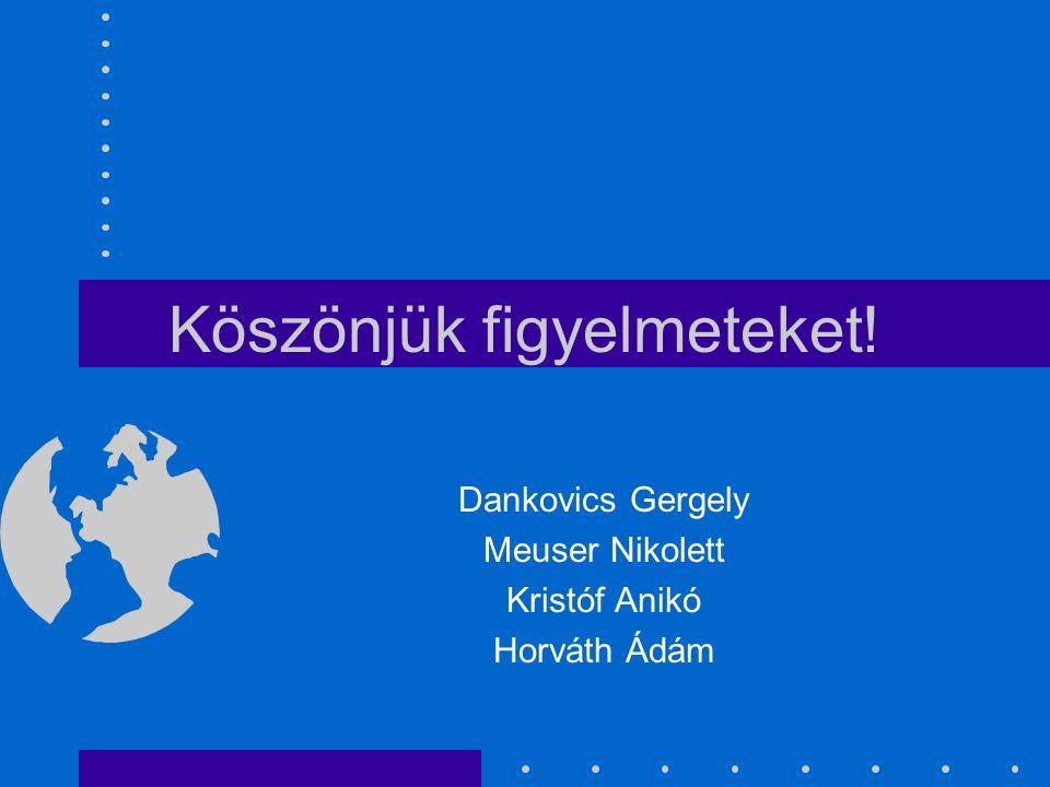 Köszönjük figyelmeteket! Dankovics Gergely Meuser Nikolett Kristóf Anikó Horváth Ádám