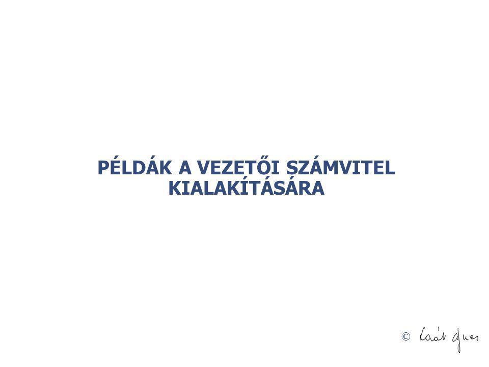 © PÉLDÁK A VEZETŐI SZÁMVITEL KIALAKÍTÁSÁRA