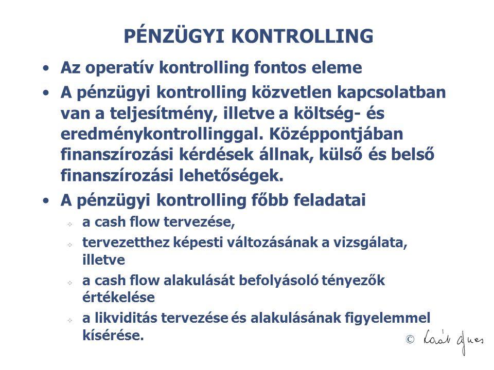 © PÉNZÜGYI KONTROLLING Az operatív kontrolling fontos eleme A pénzügyi kontrolling közvetlen kapcsolatban van a teljesítmény, illetve a költség- és er