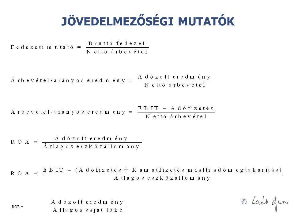 © JÖVEDELMEZŐSÉGI MUTATÓK ROE =