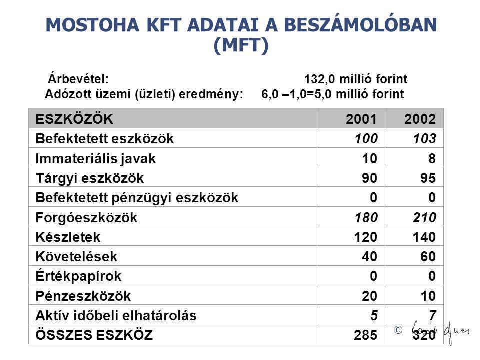 © Árbevétel: 132,0 millió forint Adózott üzemi (üzleti) eredmény: 6,0 –1,0=5,0 millió forint ESZKÖZÖK20012002 Befektetett eszközök100103 Immateriális
