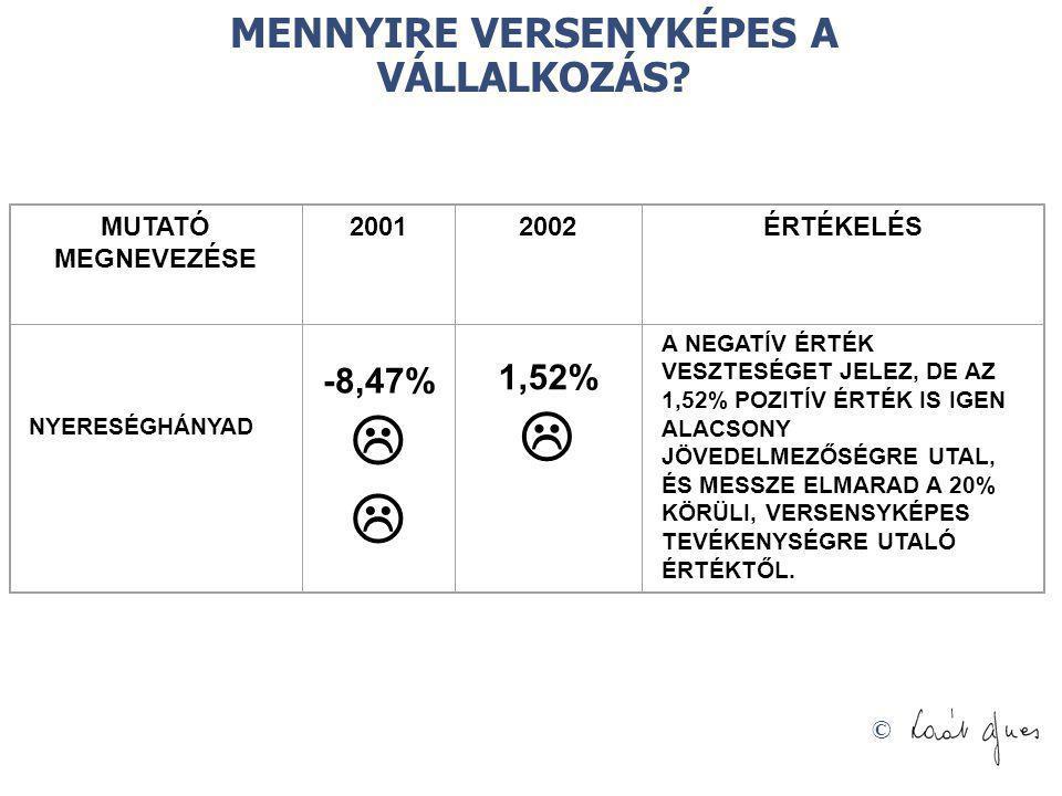 © MENNYIRE VERSENYKÉPES A VÁLLALKOZÁS? MUTATÓ MEGNEVEZÉSE 20012002ÉRTÉKELÉS NYERESÉGHÁNYAD -8,47%  1,52%  A NEGATÍV ÉRTÉK VESZTESÉGET JELEZ, DE AZ 1