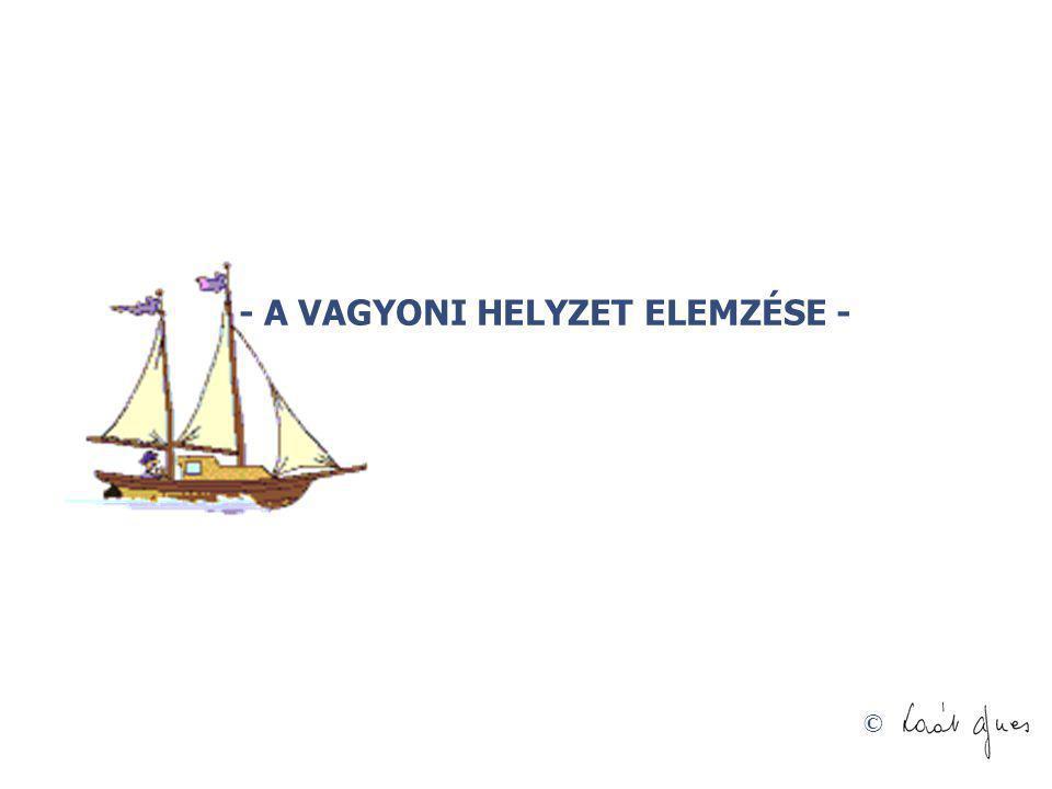 © - A VAGYONI HELYZET ELEMZÉSE -