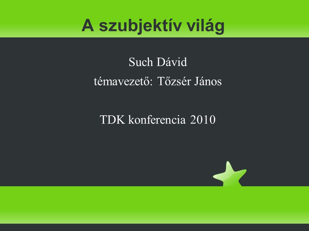 A szubjektív világ Such Dávid témavezető: Tőzsér János TDK konferencia 2010