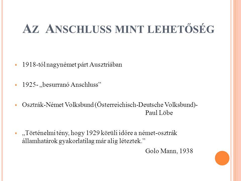 """A Z A NSCHLUSS MINT LEHETŐSÉG  1918-tól nagynémet párt Ausztriában  1925- """"besurranó Anschluss  Osztrák-Német Volksbund (Österreichisch-Deutsche Volksbund)- Paul Löbe  """"Történelmi tény, hogy 1929 körüli időre a német-osztrák államhatárok gyakorlatilag már alig léteztek. Golo Mann, 1938"""