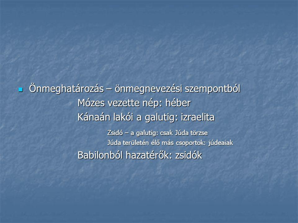 Önmeghatározás – önmegnevezési szempontból Önmeghatározás – önmegnevezési szempontból Mózes vezette nép: héber Kánaán lakói a galutig: izraelita Zsidó – a galutig: csak Júda törzse Júda területén élő más csoportok: júdeaiak Babilonból hazatérők: zsidók