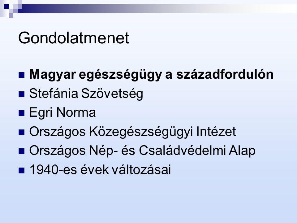 Magyar egészségügy a századfordulón Elkülönülő egészségügyi és szociális kérdés Nyomor, szegénység Higiénikus viszonyok hiánya, fertőző betegségek Magas csecsemőhalálozási arány Legfőbb rászorulók: (főként elhagyott) gyermekek és (egyedülálló) anyák