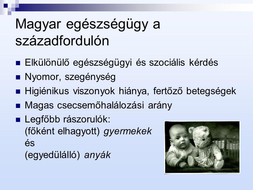 Magyar egészségügy a századfordulón Elkülönülő egészségügyi és szociális kérdés Nyomor, szegénység Higiénikus viszonyok hiánya, fertőző betegségek Mag
