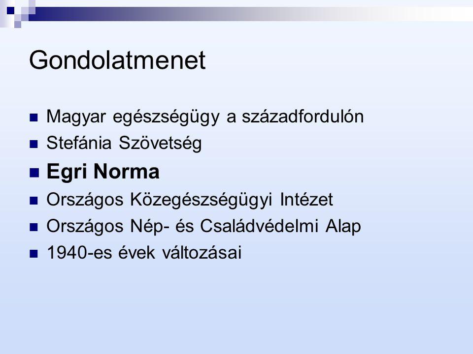 Egri Norma I.