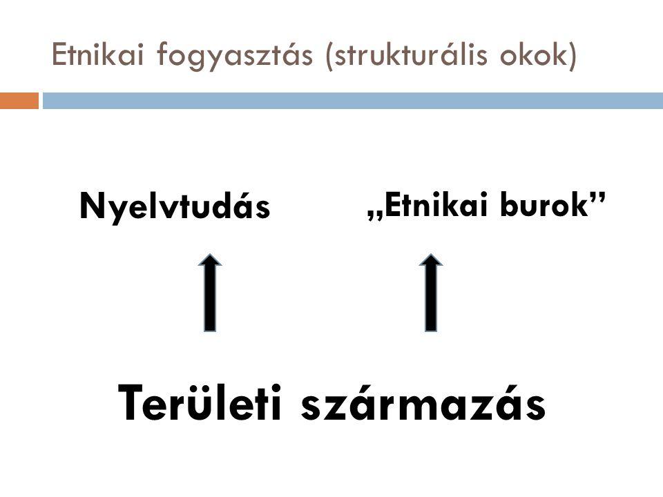 """Etnikai fogyasztás (strukturális okok) Nyelvtudás """"Etnikai burok Területi származás"""