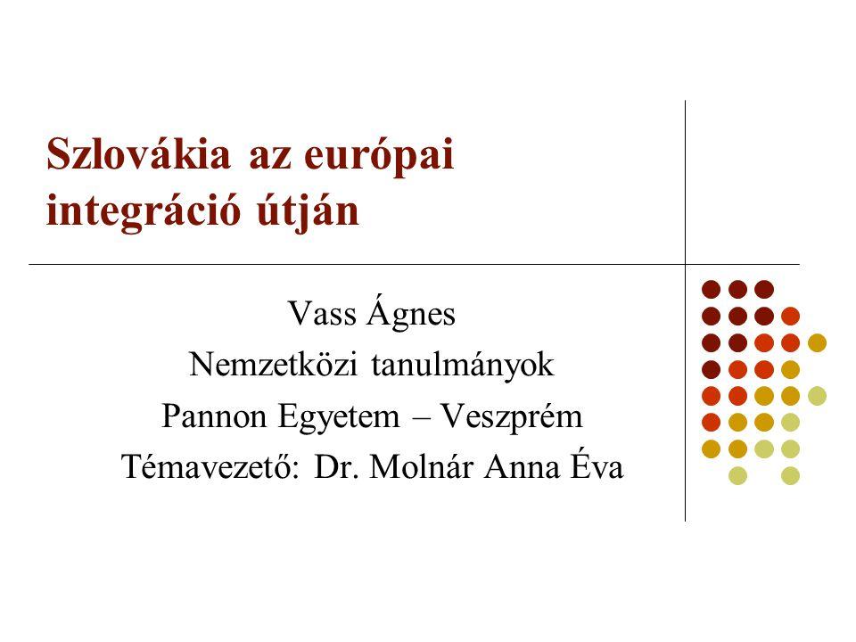 A pályamunka bemutatása Hipotézis: európai integráció ↔ nemzetállam építés – politikai pártok szerepe Fejezetek: Szlovákia helyzete az Európai Uniós csatlakozás előtt Csatlakozási folyamat részletes bemutatása Szlovákia, mint az Európai Unió tagja Politikai pártok Felhasznált források: Szlovák, angol és magyar nyelvű szakirodalom Politikai elemzések Az érintett uniós szerződések szövege Politikai pártok programjai Kutatás módszere: dokumentum és tartalomelemzés, komparatív megközelítés