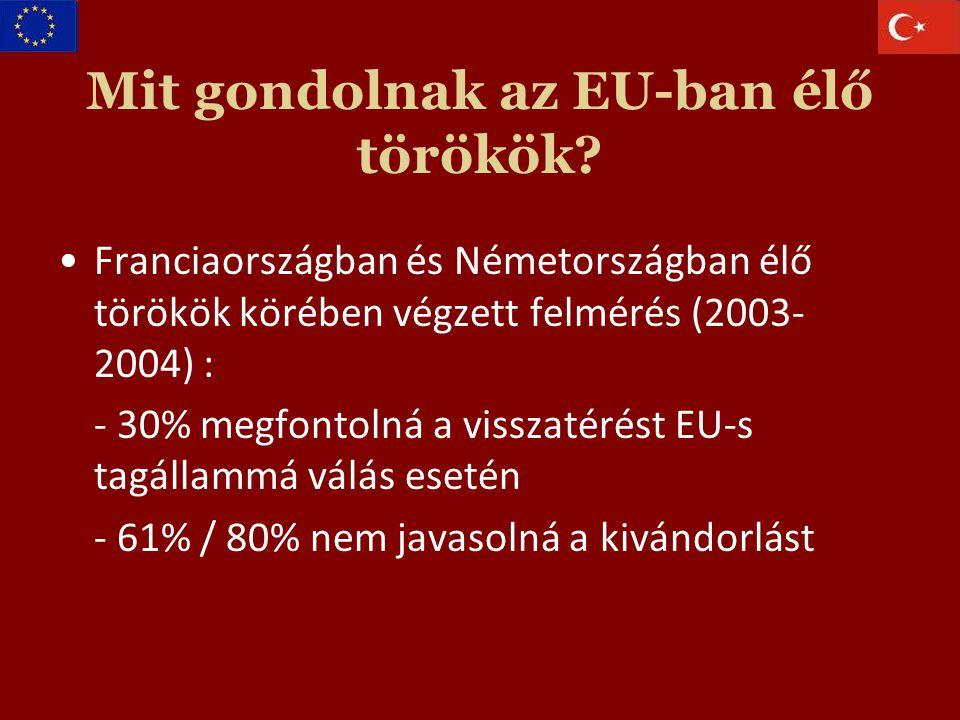 Mit gondolnak az EU-ban élő törökök.