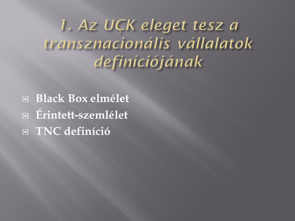  Black Box elmélet  Érintett-szemlélet  TNC definíció