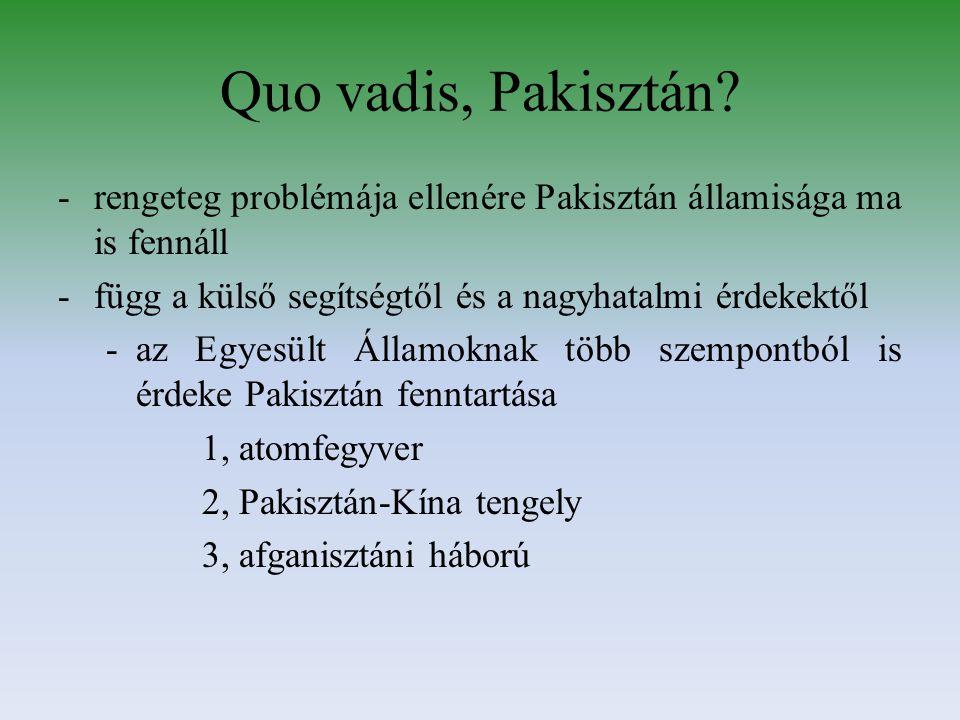 Quo vadis, Pakisztán.