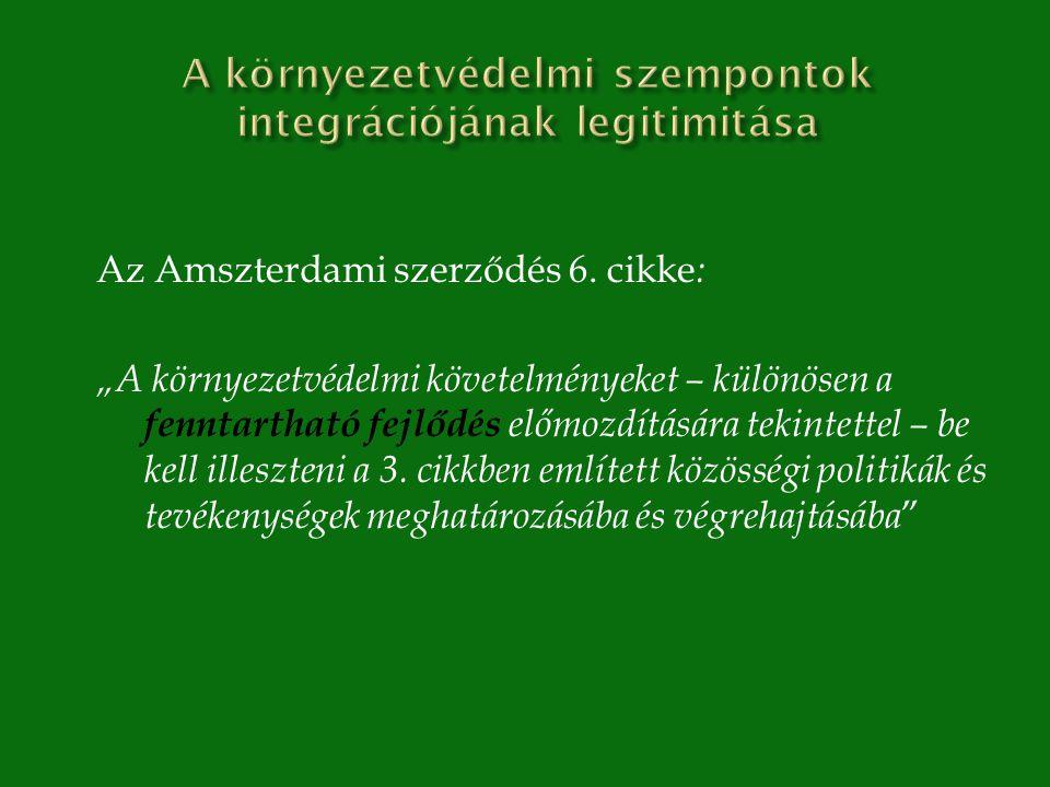 Az Amszterdami szerződés 6.