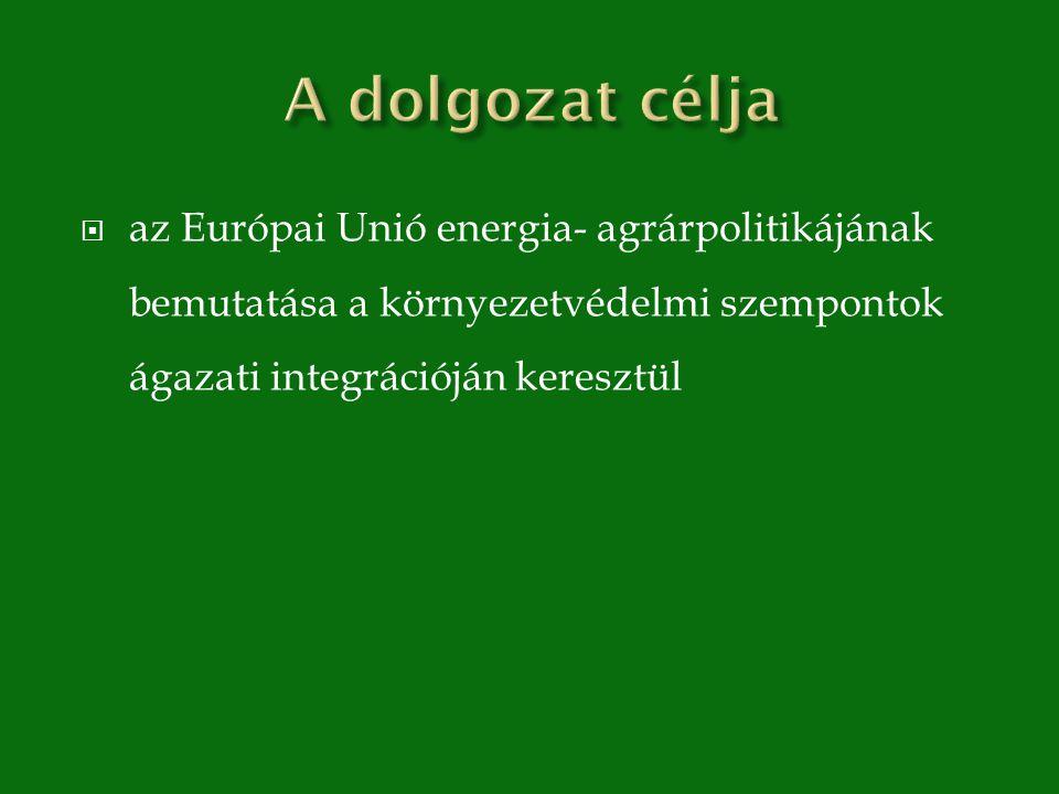  az Európai Unió energia- agrárpolitikájának bemutatása a környezetvédelmi szempontok ágazati integrációján keresztül