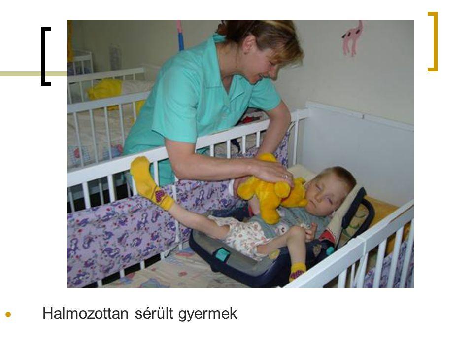 4. Melléklet  Halmozottan sérült gyermek