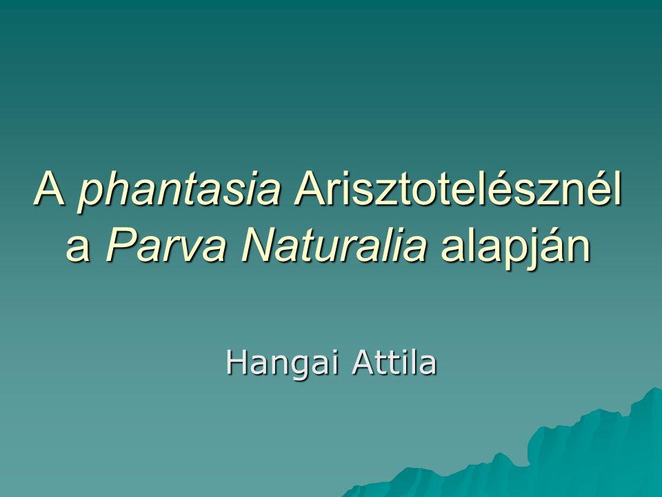 A phantasia Arisztotelésznél a Parva Naturalia alapján Hangai Attila