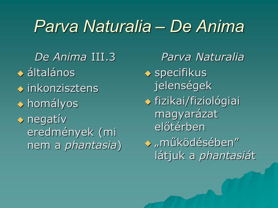 Parva Naturalia – De Anima De Anima III.3  általános  inkonzisztens  homályos  negatív eredmények (mi nem a phantasia) Parva Naturalia  specifiku